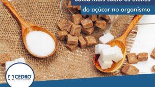 Saiba mais sobre os efeitos do açúcar no organismo