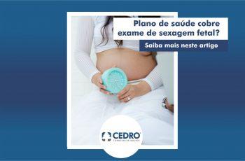 Plano de saúde cobre exame de sexagem fetal? Saiba mais neste artigo