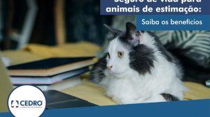 Seguro de vida para animais de estimação: saiba os benefícios