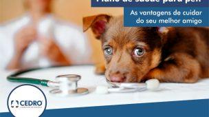 Plano de saúde para pet: as vantagens de cuidar do seu melhor amigo