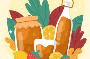 Benefícios do kombucha: saiba como fazer e quem não deve beber