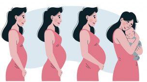 Sintomas de gravidez: saiba agora se você pode estar grávida ou não!